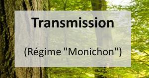 transmission2-300x157